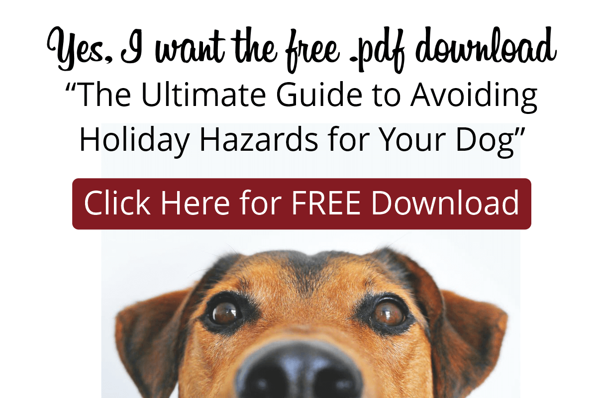 FREE DOWNLOAD The Ultimate Guide to Avoiding Holiday Hazards for Your Dog
