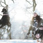 16 Tips to Keep Your Dog Safe and Comfortable During Winter Weather