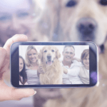 New Google Photo App Pet Feature Adds Fun for Dog Lovers