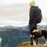 35 Best Dog-Friendly Hiking Trails in Colorado Springs