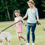 16 Compelling Reasons to Keep Your Dog on a Leash (Even If You Think They are Trustworthy)