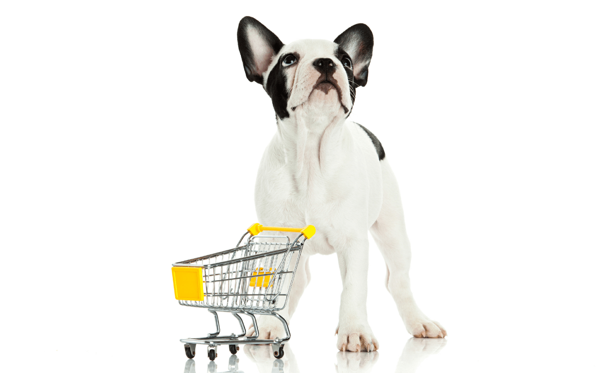 puppy and shopping cart